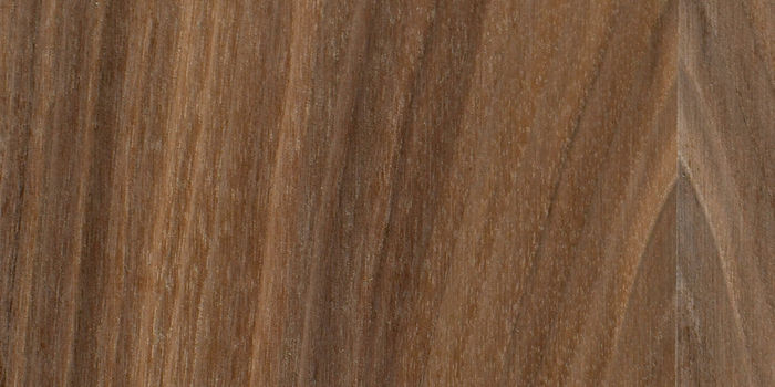 FSC® Certified American Black Walnut Veneered MDF -