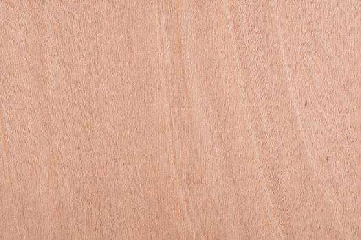 Flexible Plywood - E1 EN314-1 Class 1 EN636-1